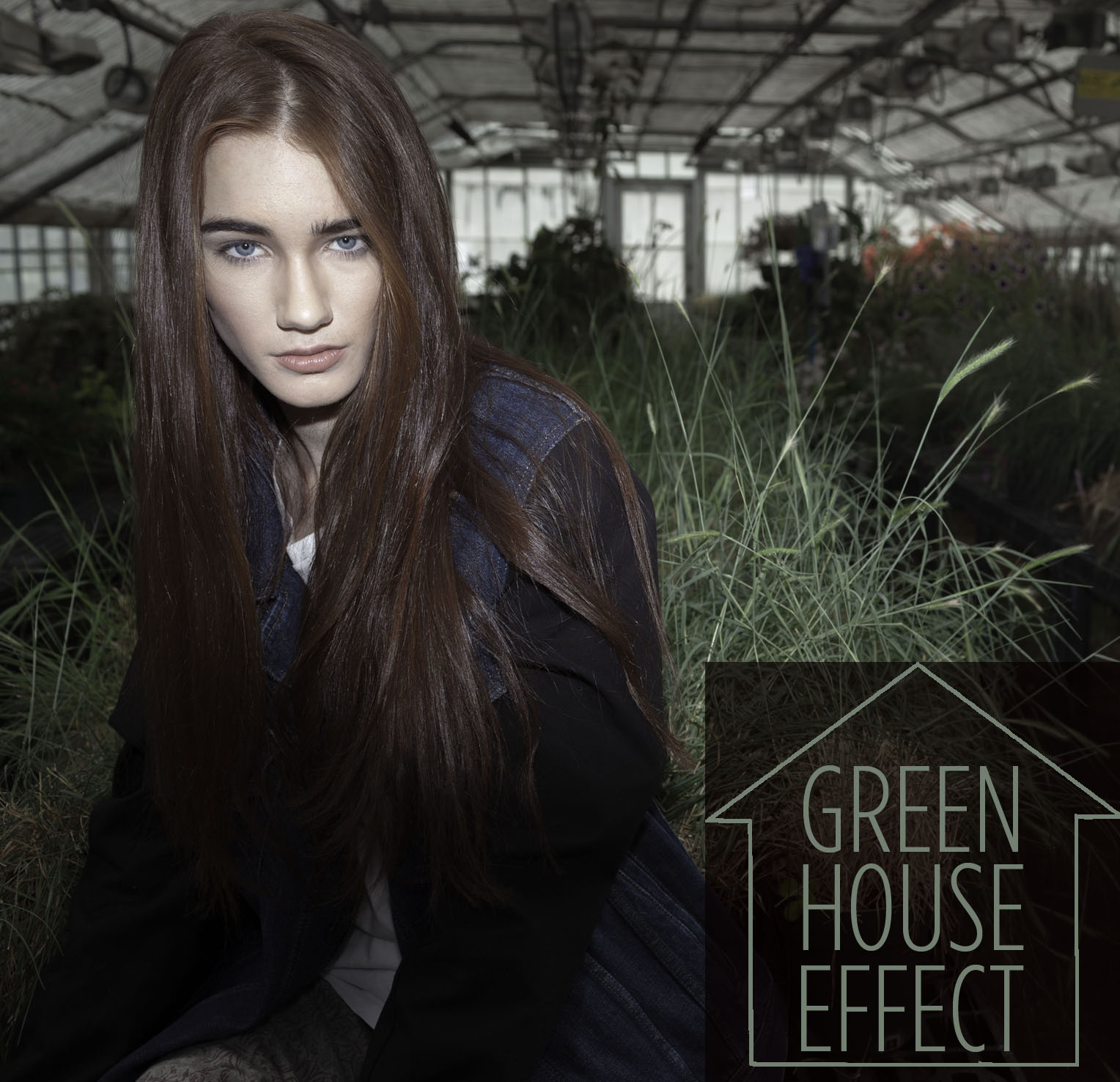 GREEEN HOUSE TP
